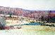 Untitled Landscape 1986 24x40 Original Painting by Larry Horowitz - 0