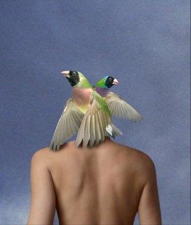 Birdshead 2006 Limited Edition Print by Ryszard Horowitz