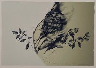 Southwest Floral 1980 WP Limited Edition Print by Frank Howell - 1