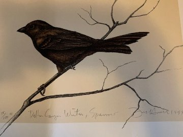 Dalton Canyon Winter Sparrow we need the paper size! Limited Edition Print - Frank Howell