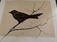 Dalton Canyon Winter Sparrow HC 1994 Limited Edition Print by Frank Howell - 3