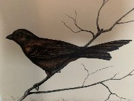 Dalton Canyon Winter Sparrow HC 1994 Limited Edition Print by Frank Howell - 5