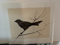 Dalton Canyon Winter Sparrow HC 1994 Limited Edition Print by Frank Howell - 2