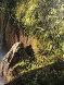 Water Magic 1986 60x50 Original Painting by Bill Hughes - 6