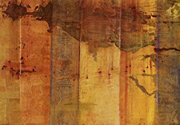 Leonardo\'s Wall 2002 55x79 Mural Limited Edition Print -  Jamali