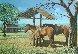Sunday Visit 1985 20x28 Original Painting by James Lumbers - 0