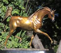 Arabian Dream Bronze Sculpture 2010 14 in Sculpture by J. Anne Butler - 0