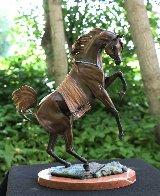 Legend Bronze Sculpture 16 in Sculpture by J. Anne Butler - 0