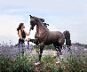 Monumental Life Sized Equine Bronze Sculpture 84 in Sculpture by J. Anne Butler - 1