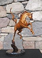 Sunshine Dancer Equine Bronze Sculpture 2015 16 in Sculpture by J. Anne Butler - 2