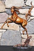 Sunshine Dancer Equine Bronze Sculpture 2015 16 in Sculpture by J. Anne Butler - 0