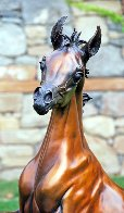 Layla Equine Life Size Bronze Sculpture 2015 53 in Sculpture by J. Anne Butler - 1
