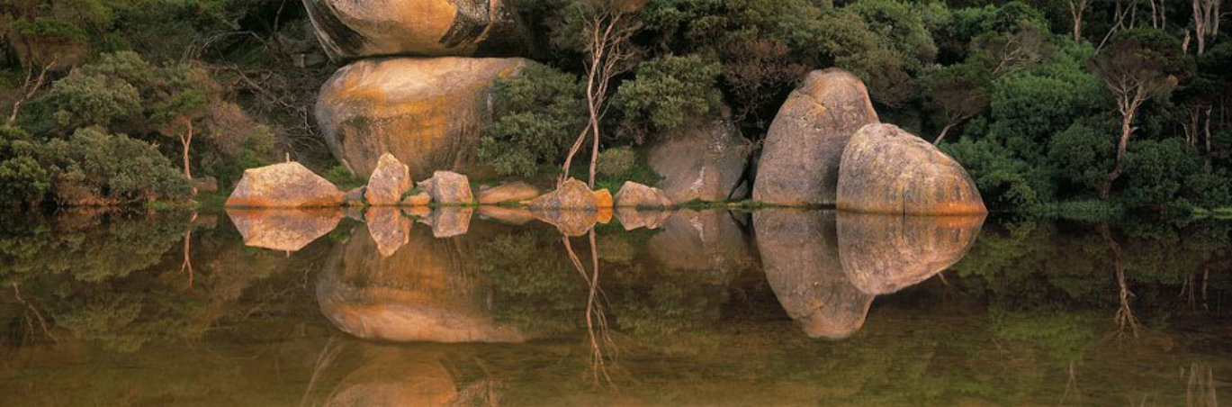 Contemplation Panorama by Peter  Jarver