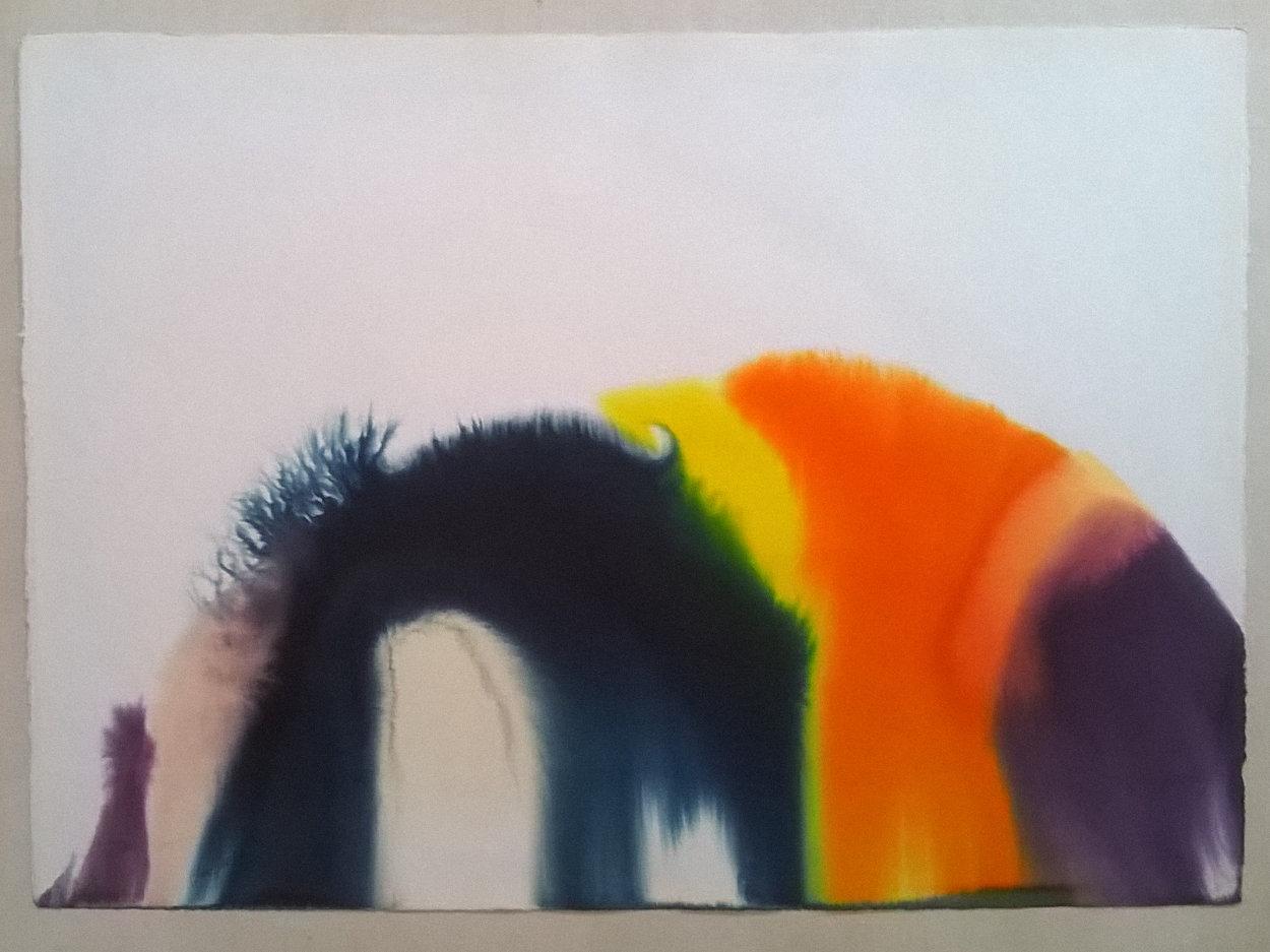 Phenomena Spectrum Bend Watercolor 1977 30x40 Watercolor by Paul Jenkins