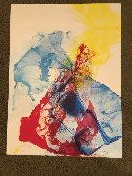 Phenomena Katherine Wheel 1969 Limited Edition Print by Paul Jenkins - 1