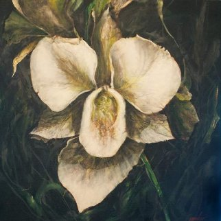 Untitled Orchid  2015 24x24 Original Painting by Joseph Kinnebrew