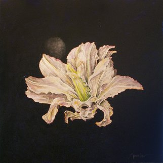 Untitled Flower 2015 24x24 Original Painting by Joseph Kinnebrew