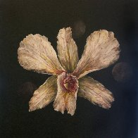 Untitled Orchid 2015 24x24 Original Painting by Joseph Kinnebrew - 1