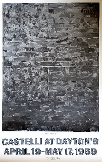 Two Flags Poster 1969 HS Limited Edition Print - Jasper Johns