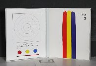 Target 1970 Limited Edition Print by Jasper Johns - 3