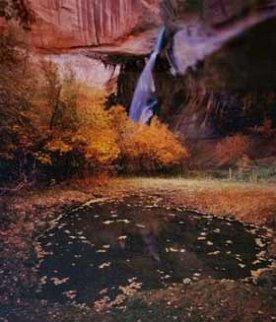 Calf Creek Falls Limited Edition Print by John Richter