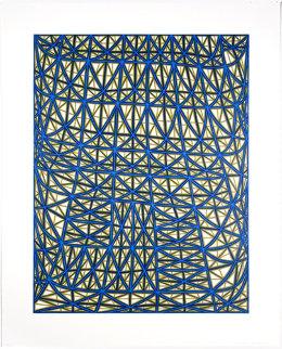 Sagging Grid 2006 Limited Edition Print - James Siena