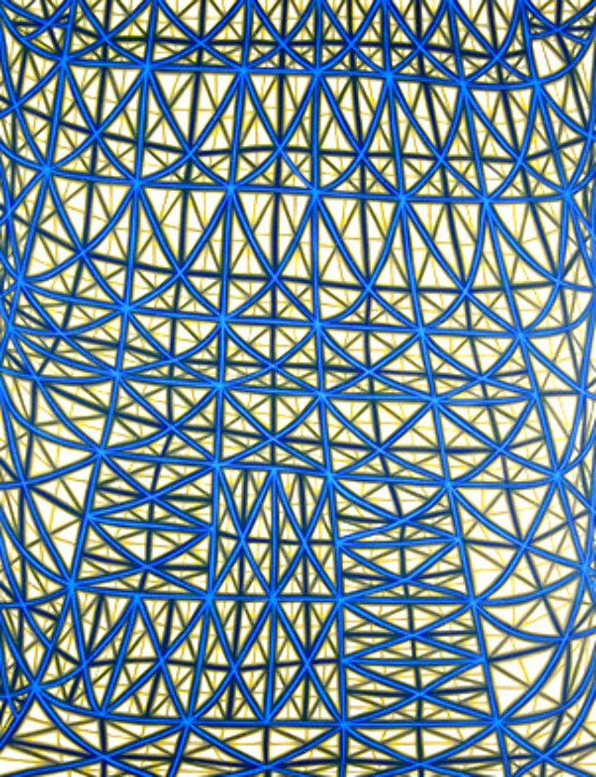 Sagging Grid Linocut 2006 Super Huge  Limited Edition Print by James Siena