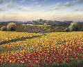 Untitled Painting 2007 49x37 Original Painting - Mario Jung