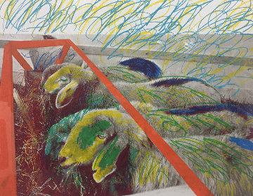 Painted Sheep 1975 Limited Edition Print - Menashe Kadishman