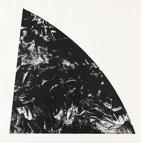 Baie Rouge (From Saint Martin Series) 1984 Limited Edition Print by Ellsworth Kelly