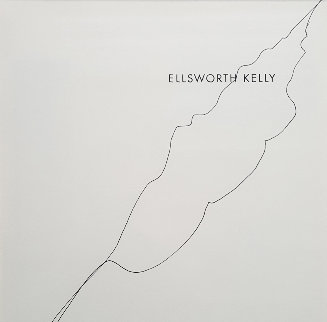 Untitled Drawing (Leaf) 2008 19x17 Drawing - Ellsworth Kelly