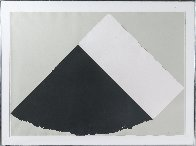Dark Gray and White 1977 Limited Edition Print by Ellsworth Kelly - 1