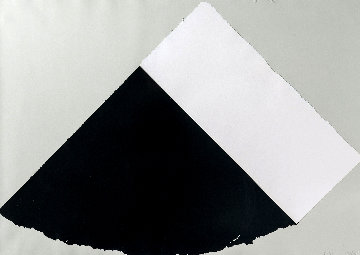 Dark Gray and White 1977 Limited Edition Print - Ellsworth Kelly