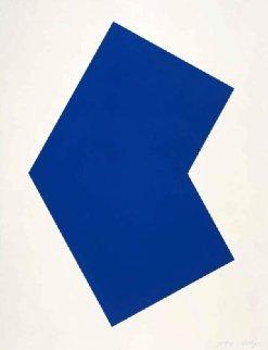Blue 2001 Limited Edition Print - Ellsworth Kelly