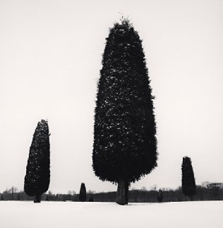 Upper Park, Peterhof, Russia 1999 Photography - Michael Kenna