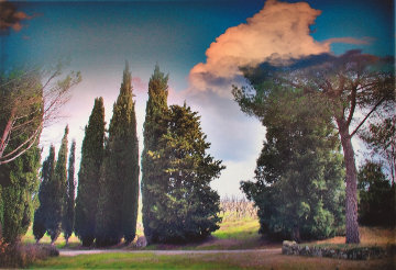 Tuscan Landscape 2007 Limited Edition Print - Michael Knigin