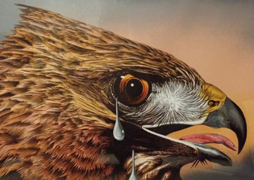 Special Bird II 1978 AP 1978 Limited Edition Print - Michael Knigin