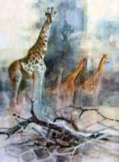 Giraffe 1988 35x28 Original Painting - Kobus Moller