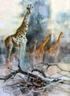 Giraffe 1988 35x28 Huge Original Painting - Kobus Moller