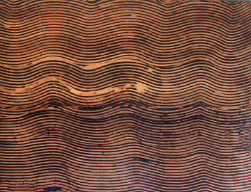 Untitled/Wave Ebony Ash, from the Curtain Series 2005 36x48 Huge Original Painting - Kris Cox