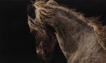 Fire And Flight 2003 Limited Edition Print by Judy Larson