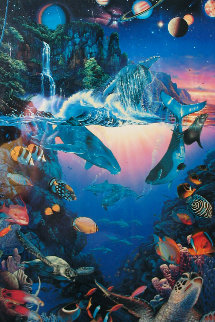Cosmos 1991 Limited Edition Print - Christian Riese Lassen
