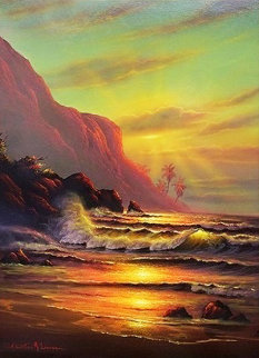 Hawaiian Sunset 2000 40x30 Original Painting - Christian Riese Lassen