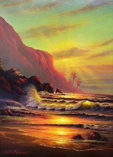Hawaiian Sunset 2000 40x30 Super Huge Original Painting - Christian Riese Lassen