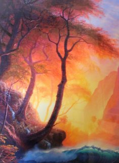 Illuminations 2006 Limited Edition Print - Christian Riese Lassen