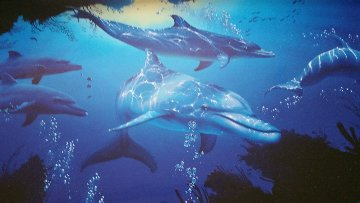 Five Dolphins 1997 Limited Edition Print - Christian Riese Lassen