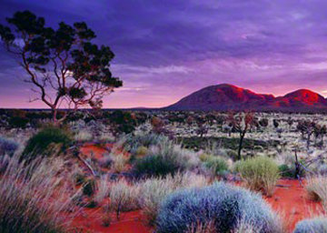 Painted Skies (Kata Tjuta National Park) Australia 2001 Panorama - Peter Lik