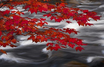 River of Zen (Telluride, Colorado)   Panorama - Peter Lik