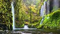 Whispering Falls  Panorama - Peter Lik