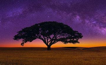 Celestial Dreams 1.5M Huge Panorama - Peter Lik